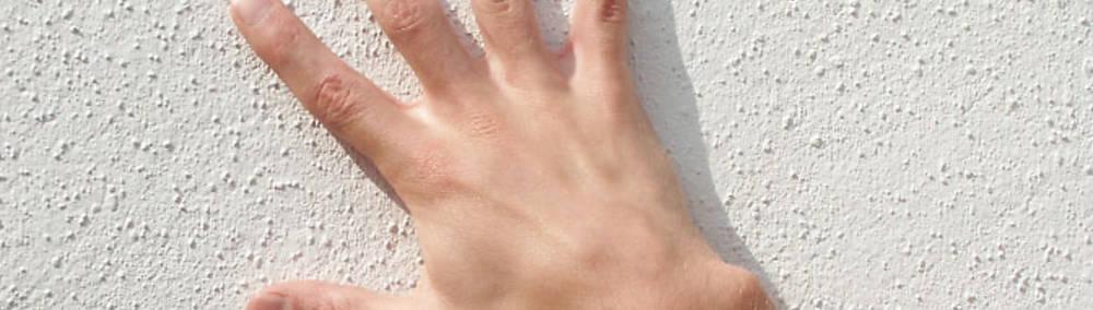 Die Magie der fünf Finger: Die Hand - ein unglaubliches Instrument ...
